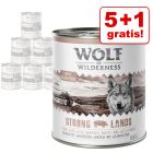 5 + 1 gratis! 6 x 800 g Wolf of Wilderness Adult/ Junior/ Senior