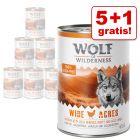 5 + 1 gratis! 6 x 400 g Wolf of Wilderness Natvoer