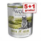 5 + 1 gratis! 6 x 800 g Wolf of Wilderness Senior Natvoer