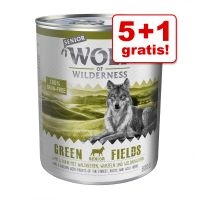 5 + 1 gratis! 6 x 800 g Wolf of Wilderness Senior Natvoer