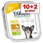 10 + 2 gratis! 12 x 150 g Yarrah Bio Alimento biologico per cani