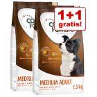 1+1 gratis! 2 x 1,5 kg Concept for Life Hondenvoer