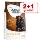 2 + 1 gratis! 3 x 1,5 kg Concept for Life Hundefutter