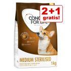 2 + 1 gratis! 3 x 1 kg / 1,5 kg Concept for Life Hundefutter 3 kg / 4,5 kg