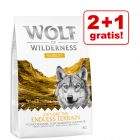 2 + 1 gratis! 3 x 1 kg Wolf of Wilderness - Performance/ Mobility/ Weight Management