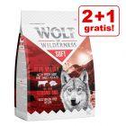"2 + 1 gratis! 3 x 1 kg Wolf of Wilderness ""Soft & Strong"""
