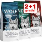 "2 + 1 gratis! 3 x 1 kg Wolf of Wilderness ""The Taste Of"" + MINI"
