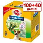 100 + 40 gratis! 140 x Pedigree Dentastix Fresh