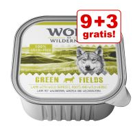 9 + 3 gratis! 12 x Wolf of Wilderness