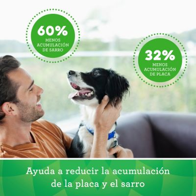 Greenies snacks dentales para perros 170 g / 340 g