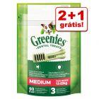 Greenies snacks dentários em promoção: 2 + 1 grátis!