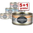 Greenwoods comida húmida para gatos 6 x 70 g latas em promoção: 5 + 1 grátis!