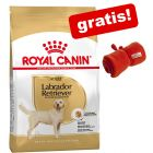 Grote zak Royal Canin Breed + gratis Royal Canin Deken