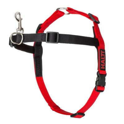 Halti Front Control Training Harness