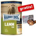 Happy Dog Pur 24 x 400 g + Alpha Spirit Jumătăți de oase cu șuncă 1 buc.