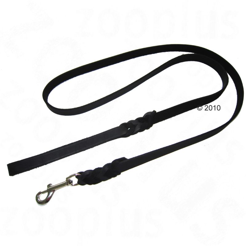 Heim Plaited Leather Dog Lead - Black