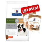 Hill's Prescription Diet 12 kg pienso + 2 x 220 g snacks ¡gratis!