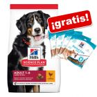 Hill's Science Plan 18 kg pienso + 4 x 170 g snack Dental Care ¡gratis!