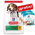 Hill's Science Plan pienso para perros + 3 snacks Hill's ¡gratis!