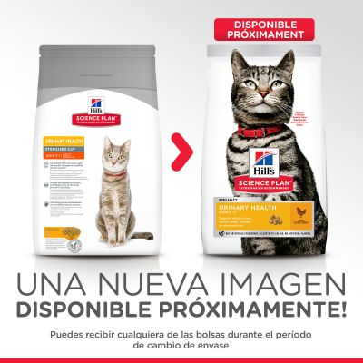 Hill's Adult Urinary Health con pollo pienso para gatos