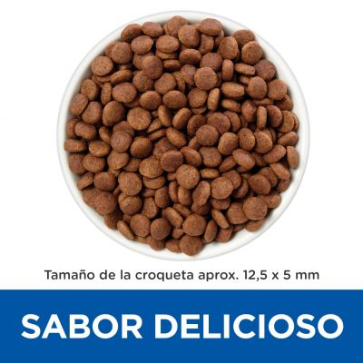 Hill's Gastrointestinal Biome Prescription Diet  pienso para perros