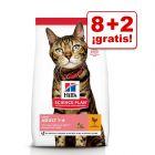 Hill's 10 kg pienso para gatos en oferta: 8 + 2 kg ¡gratis!