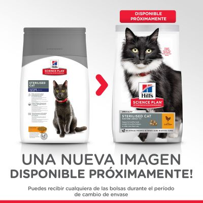 Hill's Mature Adult Sterilised con pollo pienso para gatos