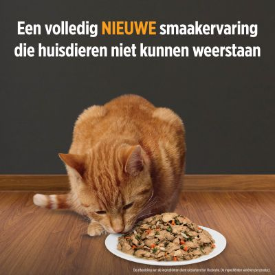Hill´s Prescription Diet c/d Urinary Stress Stoofpotje met Kip Kattenvoer