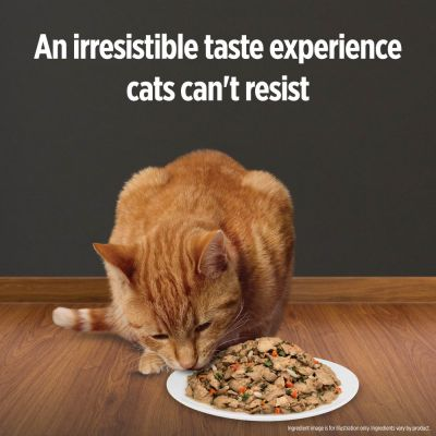 Hill's Prescription Diet Feline c/d Urinary Stress Stew - Chicken