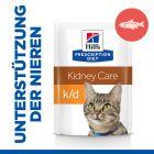 Hill's Prescription Diet k/d Kidney Care Katzenfutter mit Lachs