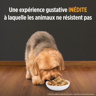 Hill's Prescription Diet k/d Kidney Care Mijoté poulet, légumes pour chien