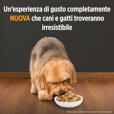 Hill's Prescription Diet Metabolic + Mobility Spezzatino Tonno per cani