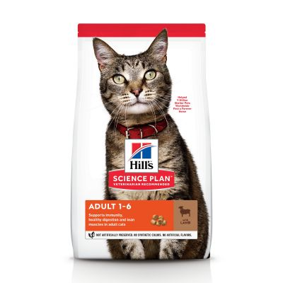 Hill's Science Plan Adult agneau, riz pour chat
