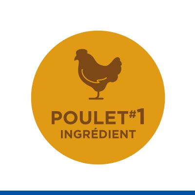 Hill's Science Plan Adult 1-6 No Grain poulet pour chat