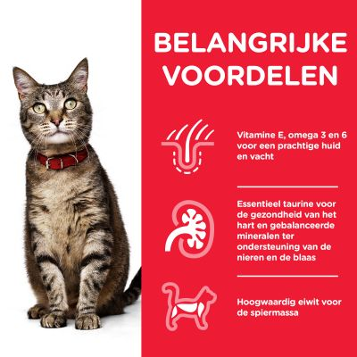 Hill's Science Plan Adult 1-6 Optimal Care Kattenvoer met Lam