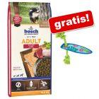 Hrană uscată Bosch + Jucărie Californian Surf gratis!