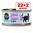 Hrana lunii: 22 + 2 gratis! Cosma Nature 24 x 70 g