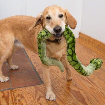 Hundespielzeug Riesenschlange günstig bei zooplus