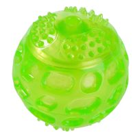 Hundespielzeug Squeaky Ball aus TPR