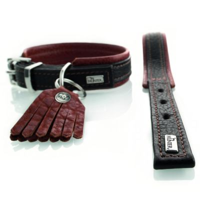 Hunter Cody Comfort Dog Collar