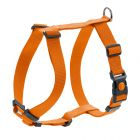 HUNTER Geschirr London Vario Rapid, orange