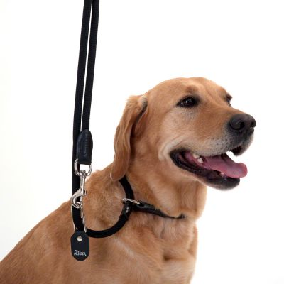 HUNTER Retriever Slip Lead - 260cm