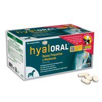 Hyaloral para perros de razas pequeñas y medianas