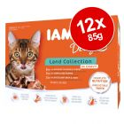 IAMS Delights Adult – Land Collection in Gravy