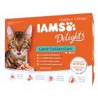 IAMS Delights Adult Mięsne smaki