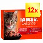 IAMS Delights Adult Mięsne smaki, 12 x 85 g