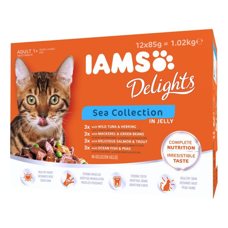 IAMS Delights Adult în gelatină 12 x 85 g