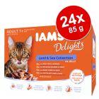 IAMS Delights Adult σε Ζελέ 24 x 85 g