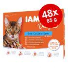 IAMS Delights Adult σε Ζελέ 48 x 85 g