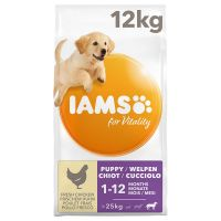 IAMS for Vitality Dog Puppy & Junior Large com frango